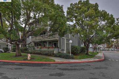 Fremont Condo/Townhouse Back On Market: 3648 Birchwood Ter #115