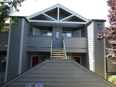 Hayward Condo/Townhouse New: 256 Anderly Ct #16