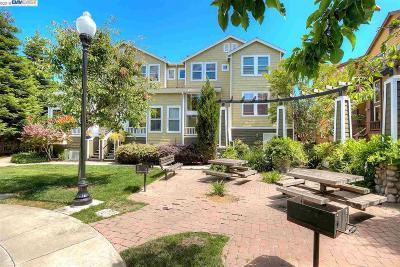 Hayward Condo/Townhouse For Sale: 782 Dean Pl