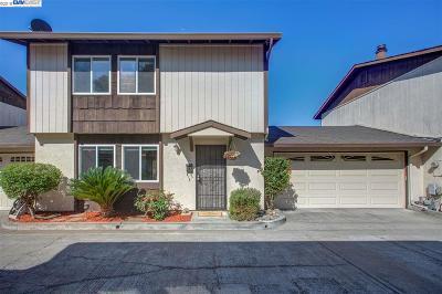 Hayward Condo/Townhouse New: 205 Poplar Ave