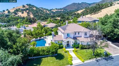 Danville Single Family Home For Sale: 143 Diablo Ranch Court