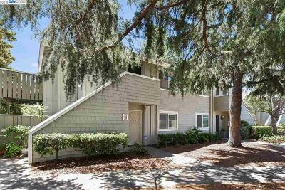 San Leandro Condo/Townhouse New: 224 Caliente Dr