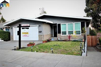 Oakland Single Family Home New: 5025 Daisy St