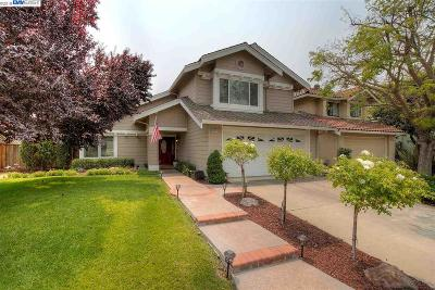 Pleasanton Single Family Home New: 6824 Corte De Flores