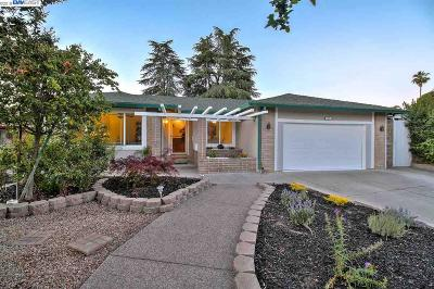 Pleasanton Single Family Home New: 502 San Miguel Ct