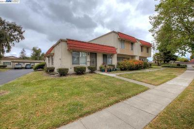 Hayward Condo/Townhouse New: 2431 Oliver Dr