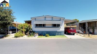 Hayward Mobile Home New: 1477 Cordoba
