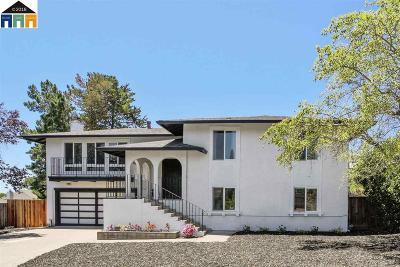 Hayward Single Family Home New: 27895 Adobe Ct
