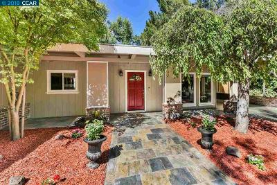 Walnut Creek Single Family Home New: 775 Palmer Rd