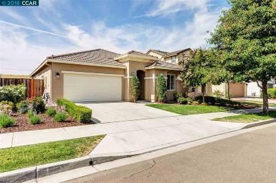 Oakley Single Family Home New: 221 Harborage Ct