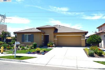 Oakley Single Family Home New: 536 Lake Park Ct