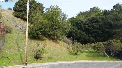 Hayward Residential Lots & Land For Sale: 3446 Eureka Ct