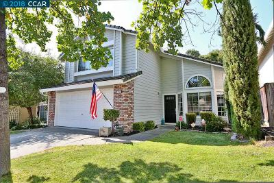 Concord Single Family Home New: 1058 Green Point Ct