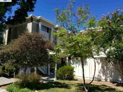 Pleasanton Condo/Townhouse New: 3399 Norton Way #4