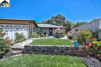 Castro Valley Single Family Home For Sale: 19002 Crest Ave