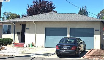 Castro Valley Multi Family Home New: 20453 Stanton Ave