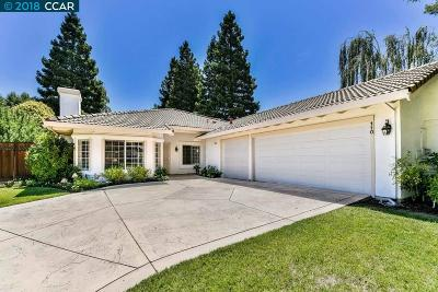 San Ramon Single Family Home New: 110 Lava Falls Pl.