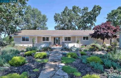 Elk Grove Single Family Home For Sale: 10041 Pleasant Grove School Rd
