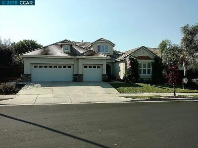 Discovery Bay, Brentwood Single Family Home New: 2569 Wakefield Ct