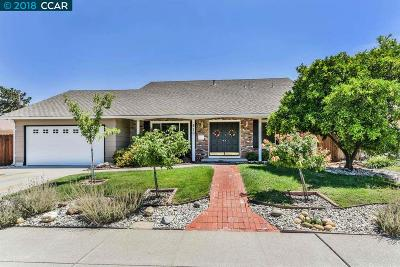 Concord Single Family Home For Sale: 910 Hastings Dr.
