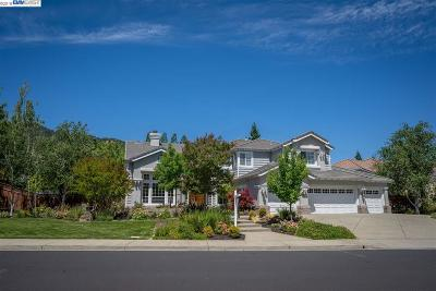 Pleasanton Single Family Home For Sale: 7961 Paragon Circle