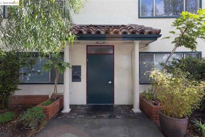Berkeley Multi Family Home For Sale: 1612 Hopkins St