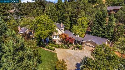 Orinda Single Family Home For Sale: 3 Honey Hill Court