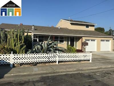 Hayward Single Family Home For Sale: 27522 E 11th St