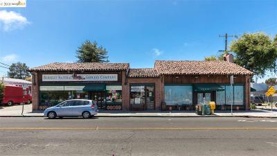 Berkeley Commercial For Sale: 1336 Gilman St