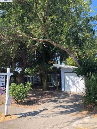 Hayward Single Family Home Pending Show For Backups: 27841 Laporte Ave