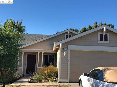 Oakley Single Family Home For Sale: 2172 El Lago Dr