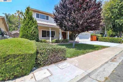 Pleasanton CA Single Family Home For Sale: $1,299,995