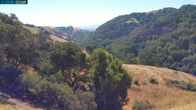 Martinez Residential Lots & Land For Sale: 5720 Alhambra Valley Rd