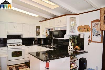 Hayward Single Family Home For Sale: 27441 Capri Ave