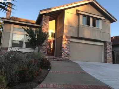 Concord Single Family Home For Sale: 1424 Garaventa Ct
