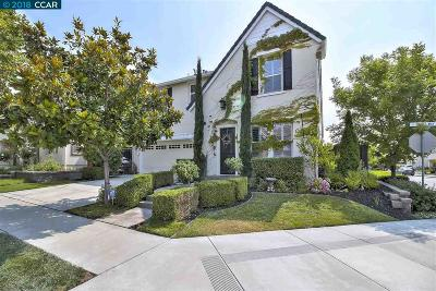 San Ramon Single Family Home New: 2389 Baker Way