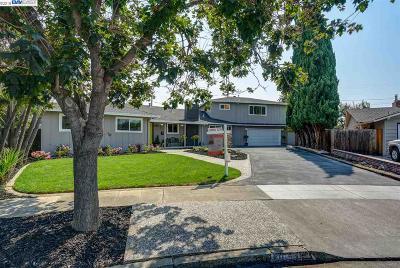 San Jose Single Family Home For Sale: 1057 Woodbine Way