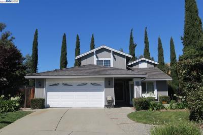 Fremont Single Family Home For Sale: 990 Yucatan Court