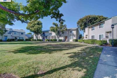 Union City Condo/Townhouse New: 32646 Endeavour Way