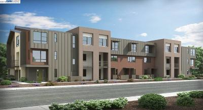 Fremont Condo/Townhouse New: 3839 Development Terrace
