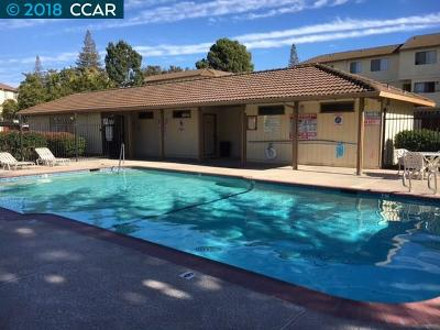 Concord Rental New: 5035 Valley Crest Dr #161