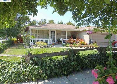 Fremont Single Family Home New: 4573 Margery Dr