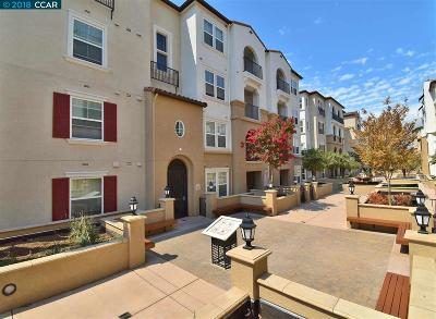 Dublin Condo/Townhouse For Sale: 3385 Dublin Blvd #308