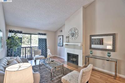 Fremont Condo/Townhouse New: 37000 Meadowbrook Cmn #203