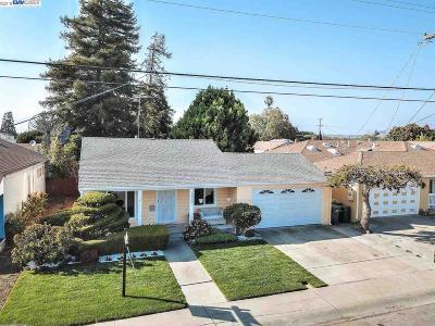 San Lorenzo Single Family Home New: 1335 Via Manzanas