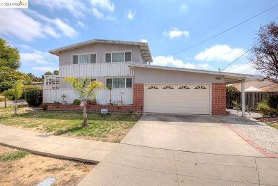 Hayward Single Family Home For Sale: 30453 Hoylake St