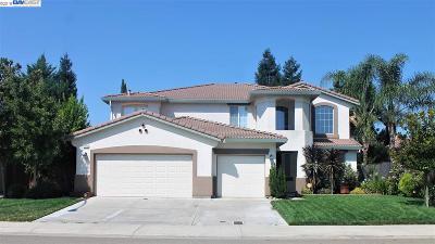 Stockton Single Family Home New: 10733 Wishon Dr