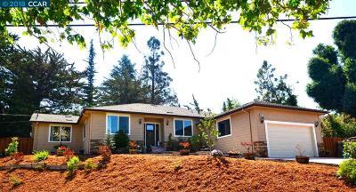 San Leandro Single Family Home New: 1627 Estudillo Ave