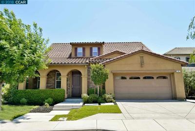 San Ramon Single Family Home For Sale: 707 Bowen Ct