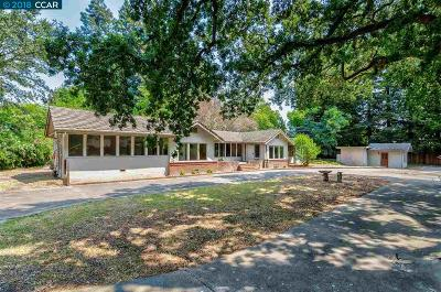 Danville Single Family Home Pending Show For Backups: 46 Smokewood Court